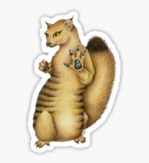210x230 Mongoose Drawing Stickers Redbubble