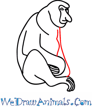 300x350 Proboscis Monkey 07.png
