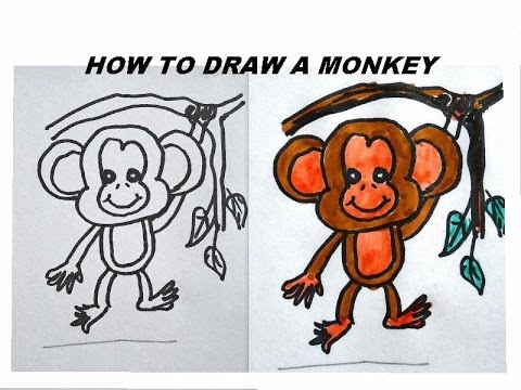 480x360 How to draw a monkey, easy step by step art tutorial