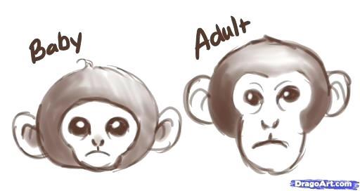 512x272 Monkey Drawing Easy How To Draw Monkeys Step 2 Cartoon Monkey