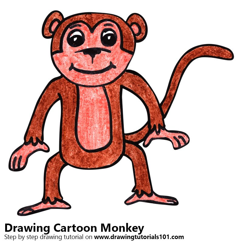800x800 Learn How To Draw A Cartoon Monkey (Cartoon Animals) Step By Step