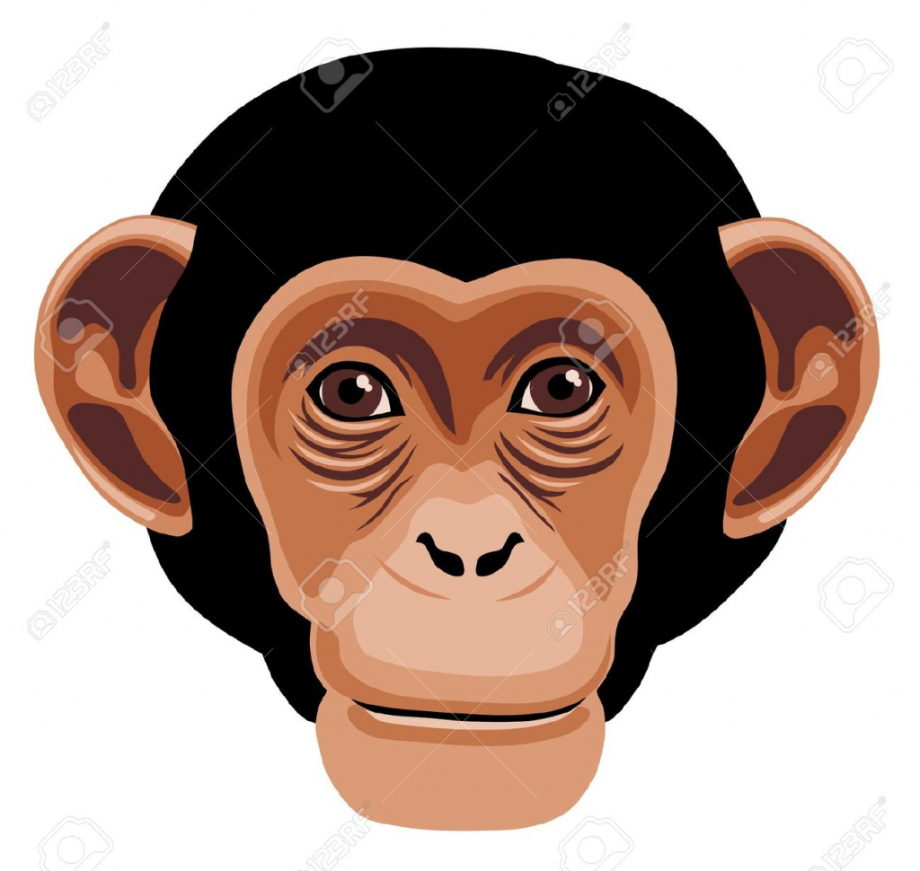Line Drawing Monkey Face : Monkey face drawing at getdrawings free for personal