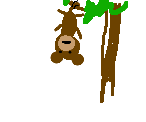 300x250 Bored Monkey Hanging Upside Down From A Tree