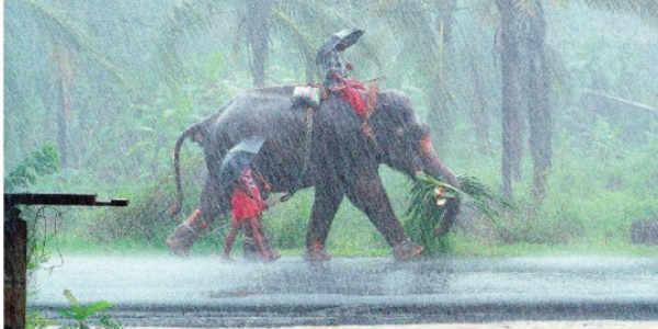 600x300 Heavy Pre Monsoon Rains Lash Kerala, To Intensify Further Skymet
