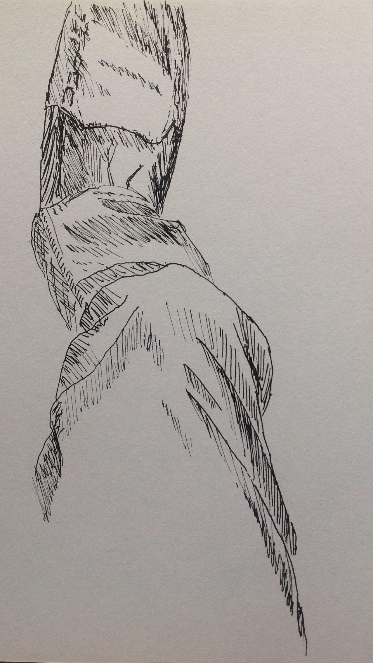 1277x2270 Monsoon Season Drawing. My Leg, Footnd Slipper. Drawn