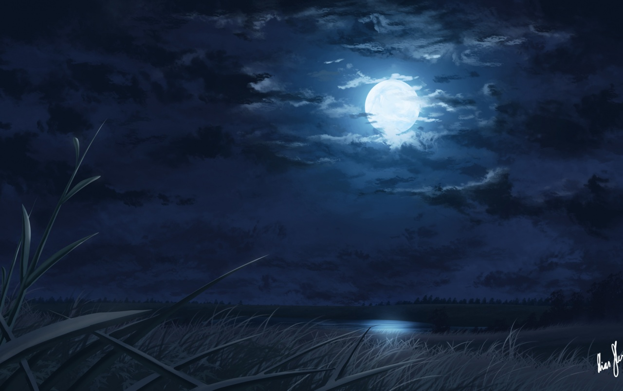1280x804 Full Moon Sea Clouds Amp Grass Wallpapers Full Moon Sea Clouds