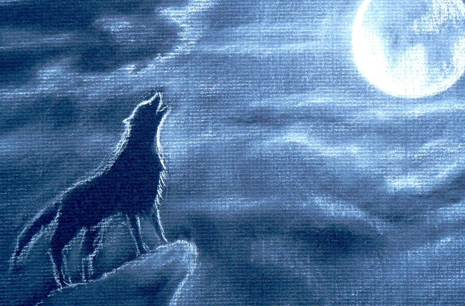 1506x992 How To Draw A Howling Wolf