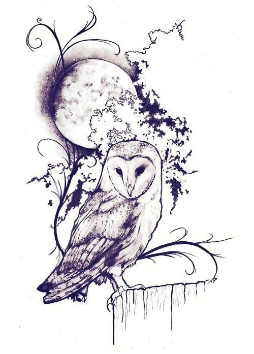 500x697 Hoot To The Moon, Pen And Ink Drawing By Robert Reed. Love