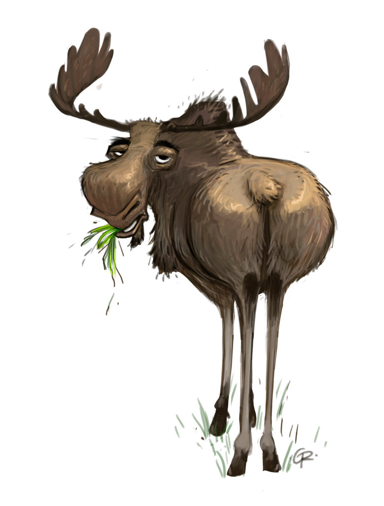 Moose Drawing at GetDrawings | Free download