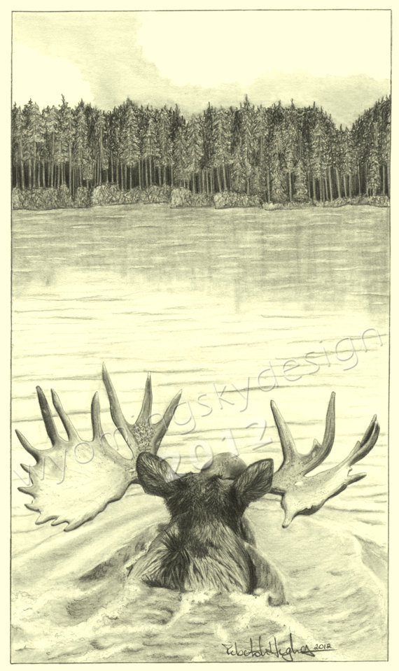 570x959 Out For A Swim Moose Digital Print From Original Pencil Drawing