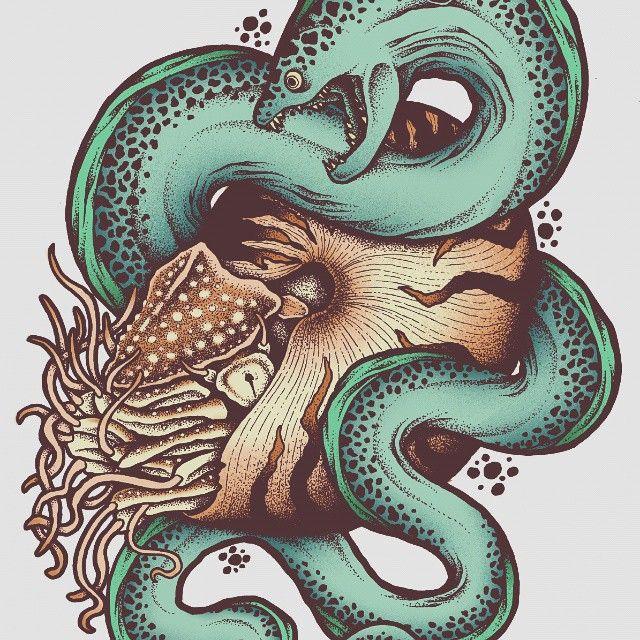640x640 Nautilus And A Moray Eel!