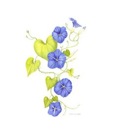 236x283 Morning Glory Porcelain Franz Porcelain Collection Les Jardin