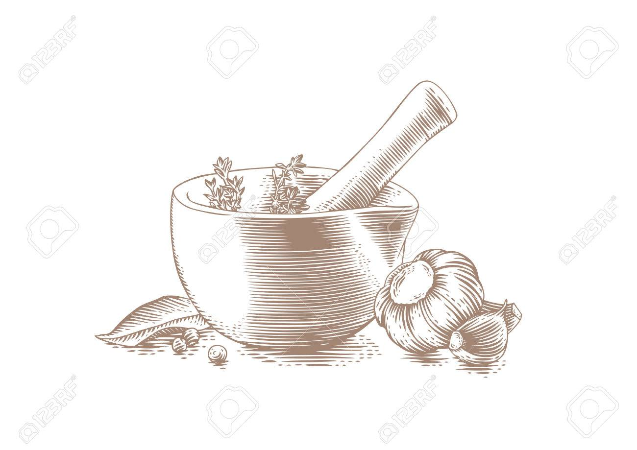 1300x919 Drawing Of Mortar Bowl With Pestle, Spice, Herbs And Garlic