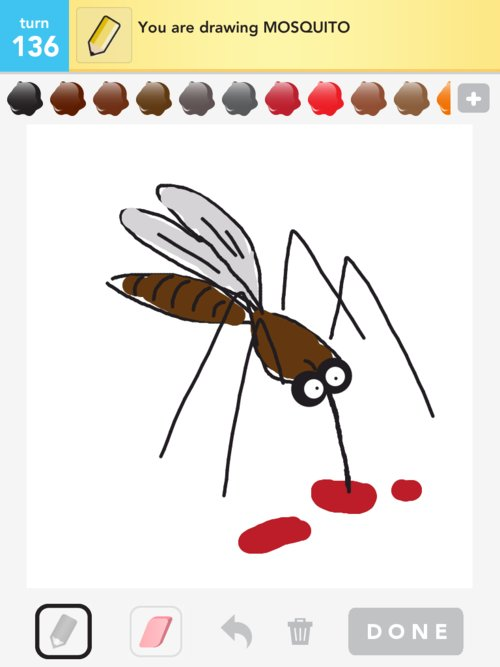 500x667 Mosquito Drawings