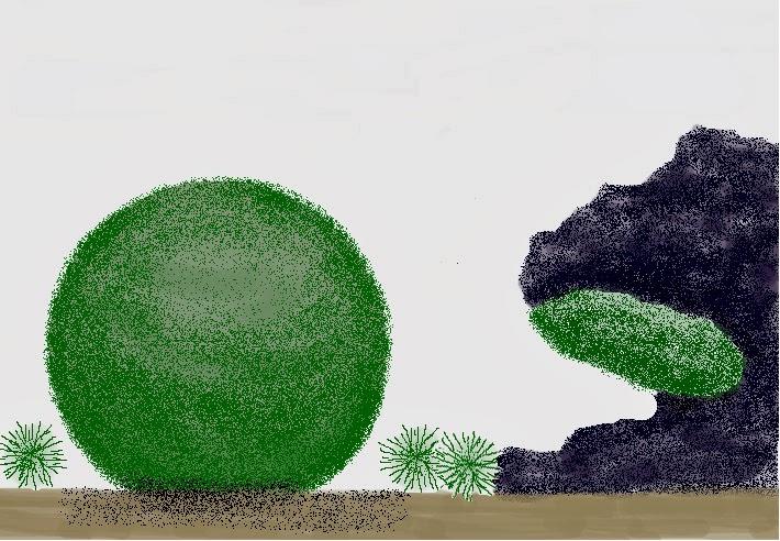 710x492 The Fern And Mossery Marimo Moss Ball Terrariums