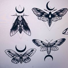 236x236 Image Result For Moth Tattoo Tattoos Moth Tattoo