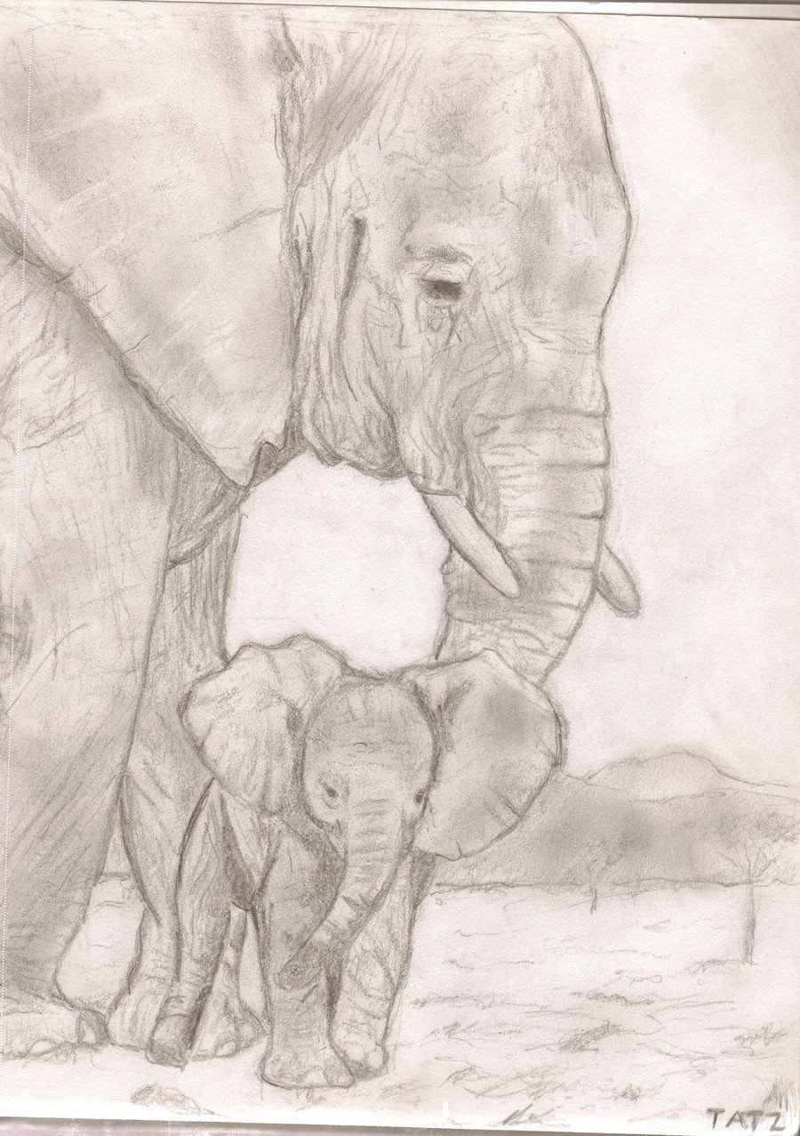 900x1277 Mother Elephant With Baby By Tatzonfire