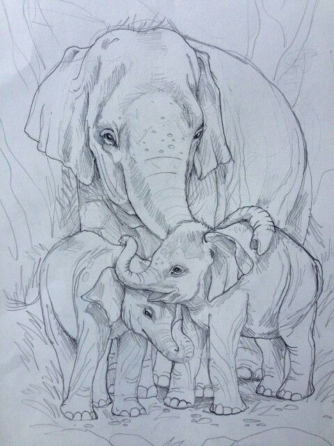 480x640 T T Mother Elephant And Two Babies Hot Tattoos Hot