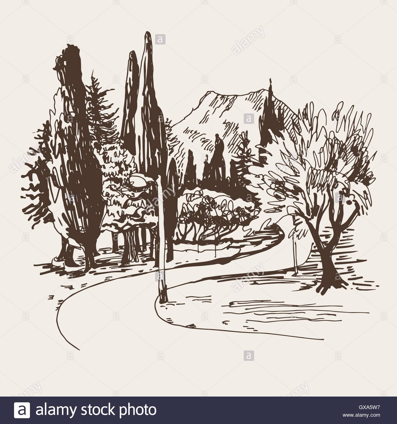 1300x1390 Sketching Of Park Alley View With Trees Cypress And Mountain