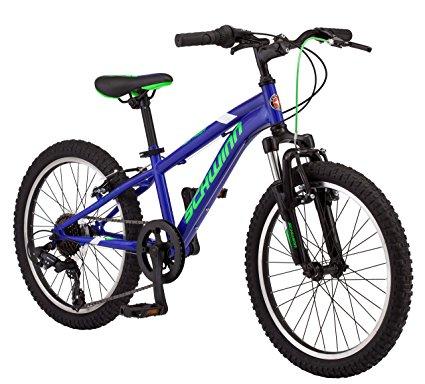 425x384 Schwinn High Timber Boy's Mountain Bicycle, 20