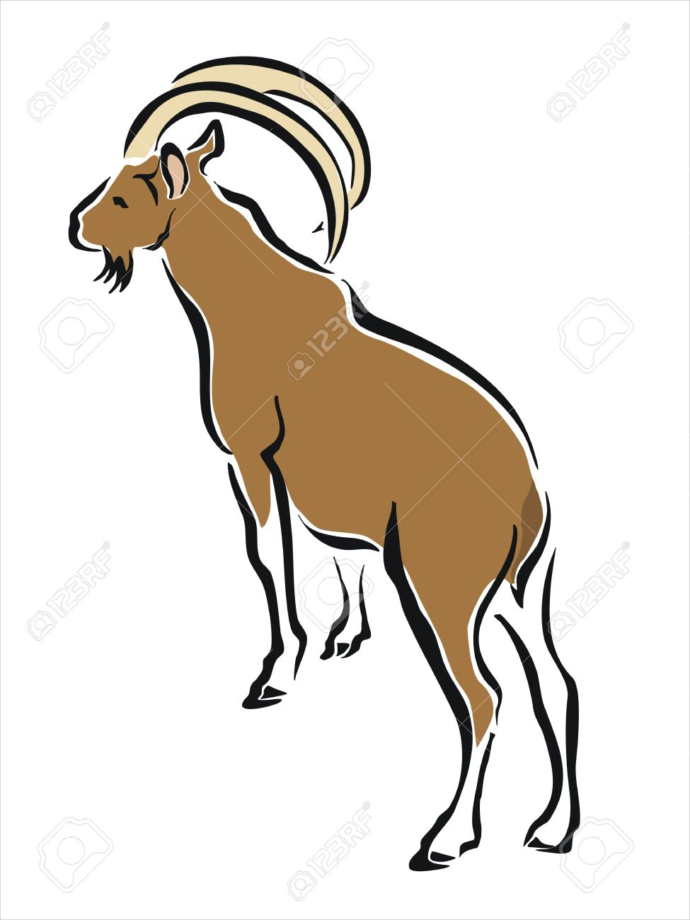 975x1300 Drawing Of A Brown Mountain Goat Royalty Free Cliparts, Vectors