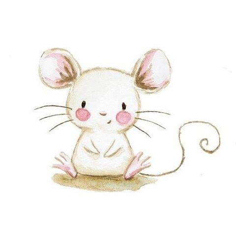 480x480 Cute Illustrations