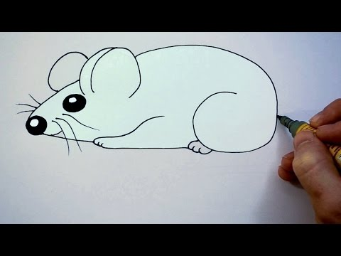 480x360 How To Draw A Cartoon Mouse