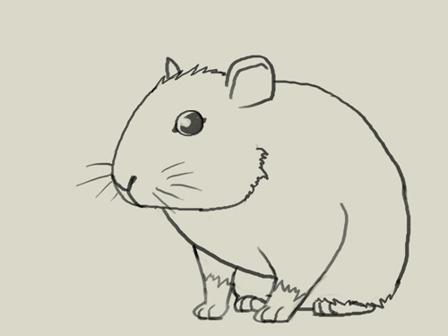 500x375 How To Draw Mouse