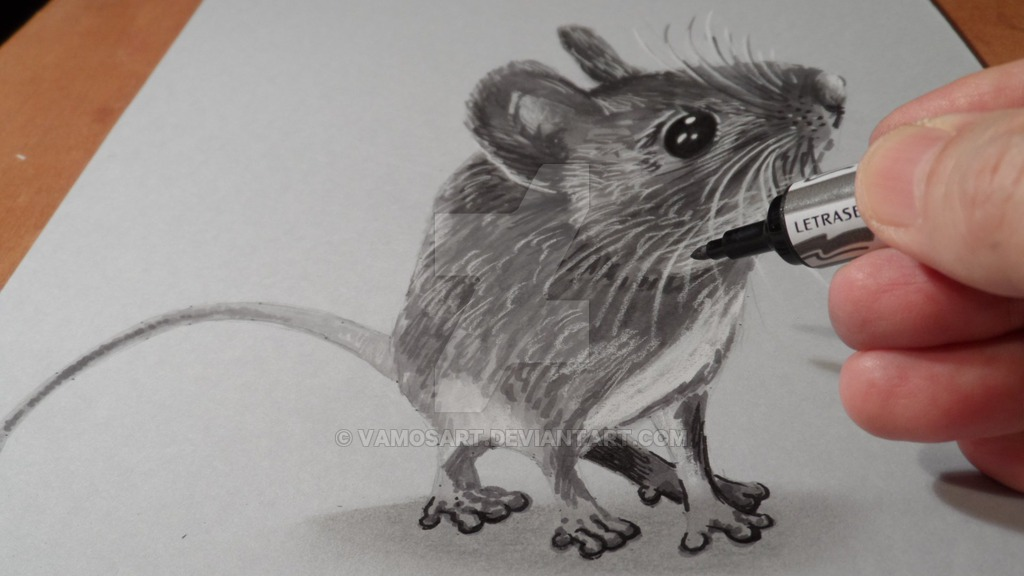 1024x576 Drawing Mouse 3d By Vamosart