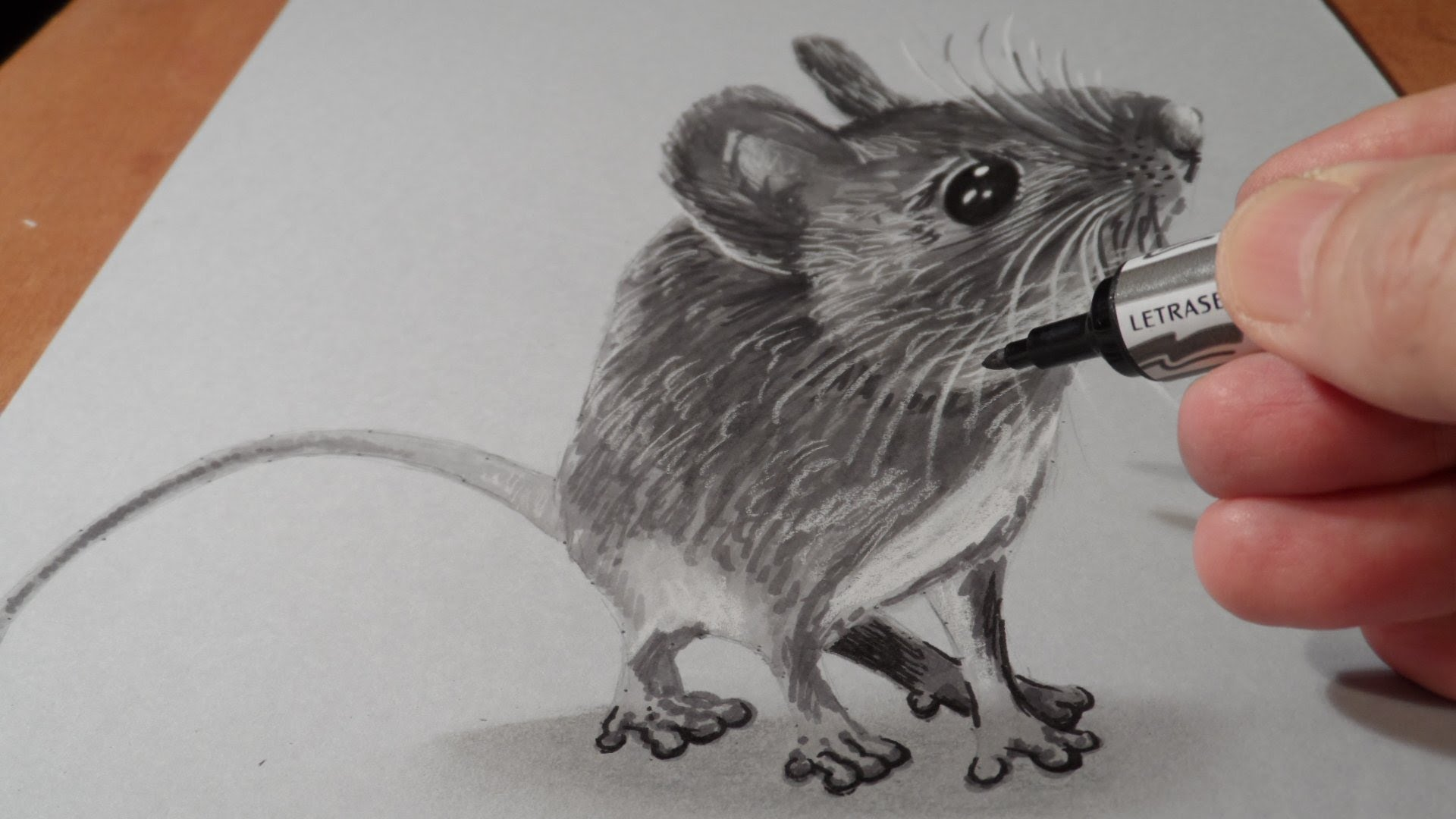 1920x1080 Drawing A Cute Mouse
