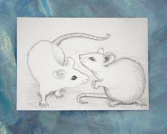 570x457 White Mice Original Pencil Drawing Of Mouse By Thekestrelandthesea