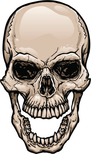 319x537 165628919 Skull With Wide Open Mouth Gettyimag By Johnhiggins5