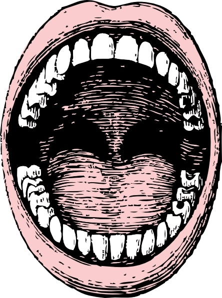 444x597 Open Mouth Clip Art Free Vector In Open Office Drawing Svg ( Svg