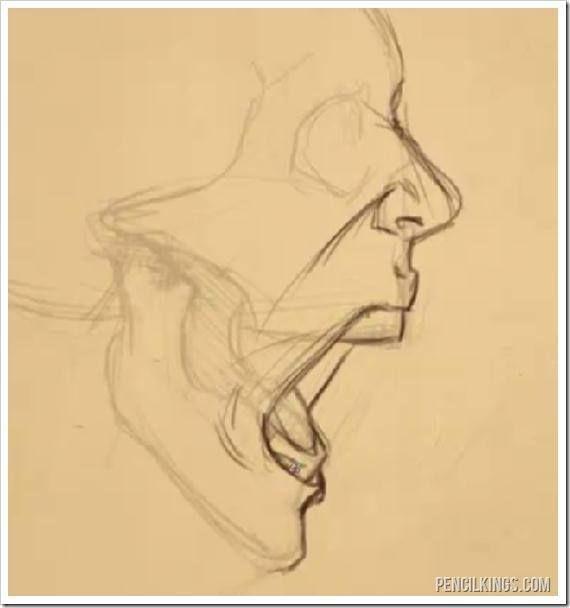570x608 Drawing A Screaming Mouth Adding Skin Drawing Pin
