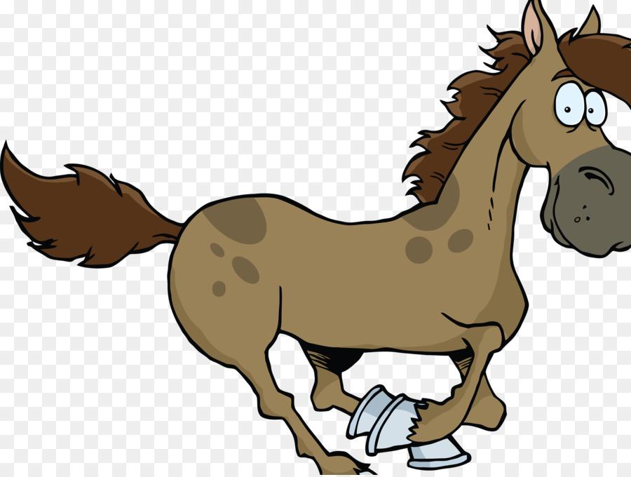 900x680 Pony Foal Drawing Mustang Mule