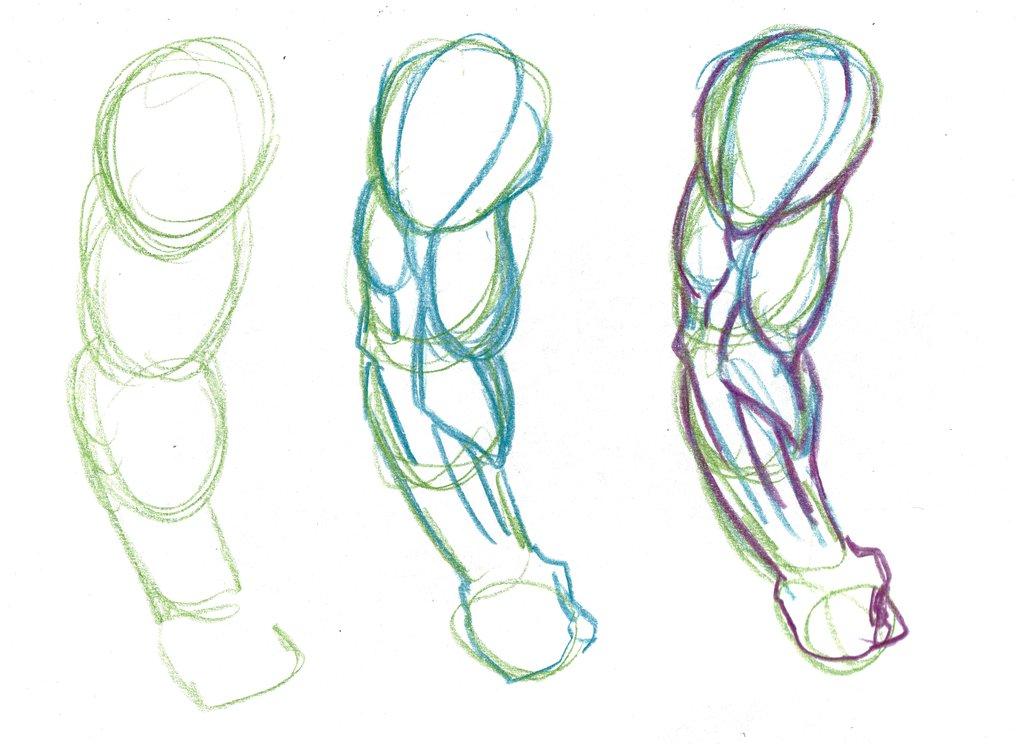 1024x744 Tutorial Anatomy Favourites By Leanfj On Anatomy