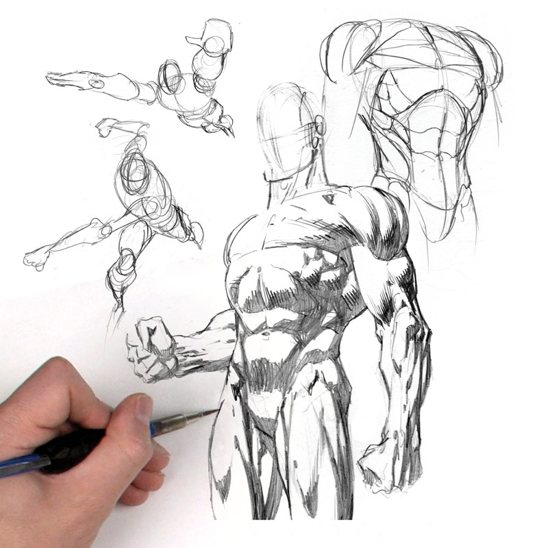 800x800 Human Figure Drawing Drawing Body Figures In Different Poses