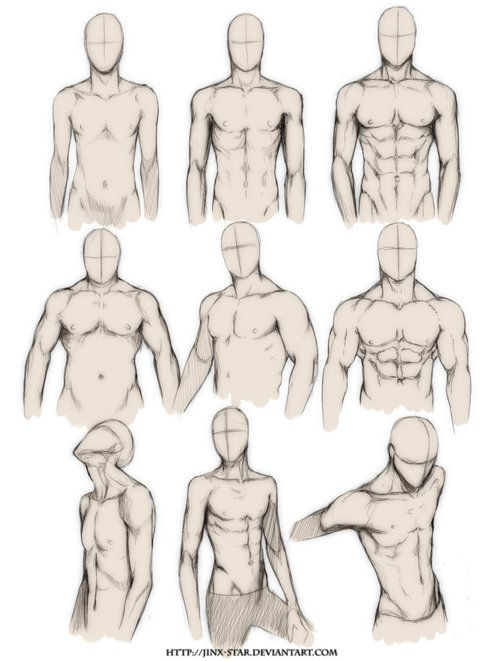 500x661 Muscle Deformation Drawing Reference For Concept Art. Lrn