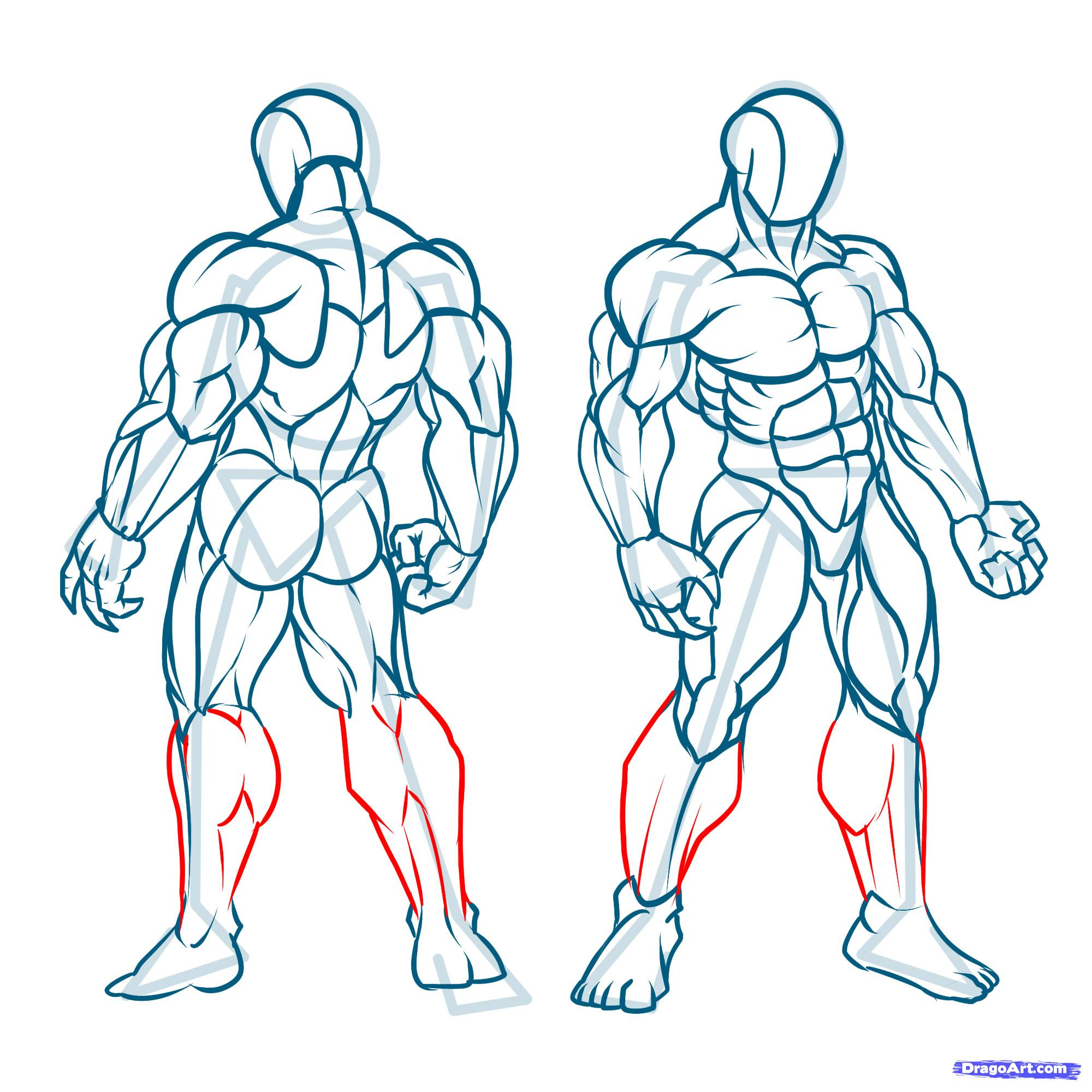 2000x2000 How To Draw Muscles Step 23 My Sanctuary Muscles