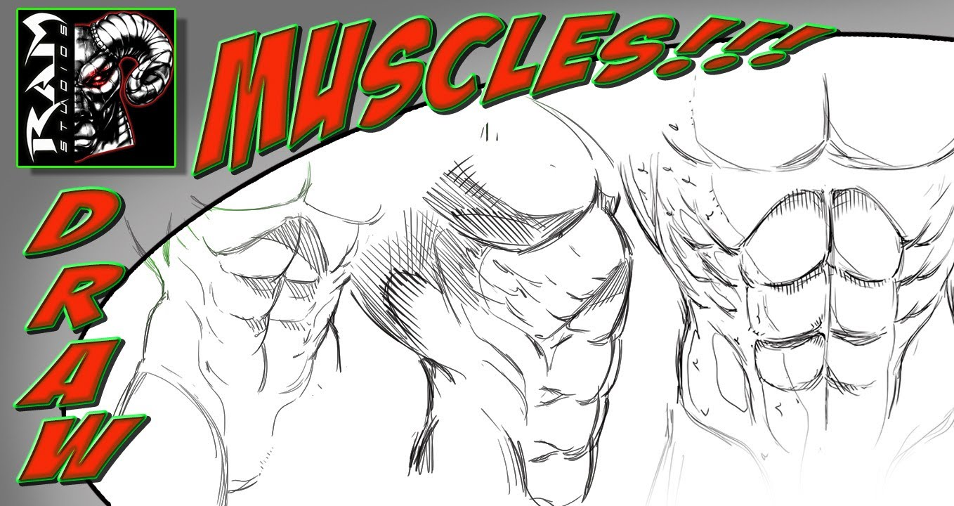 1358x720 Drawing Stomach Muscles