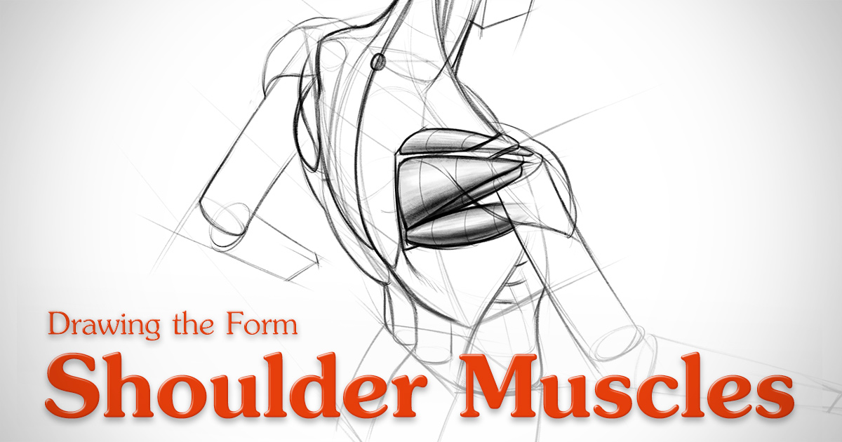 1200x630 How To Draw Shoulder Muscles