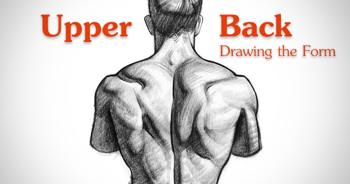 1200x630 How To Draw Upper Back Muscles