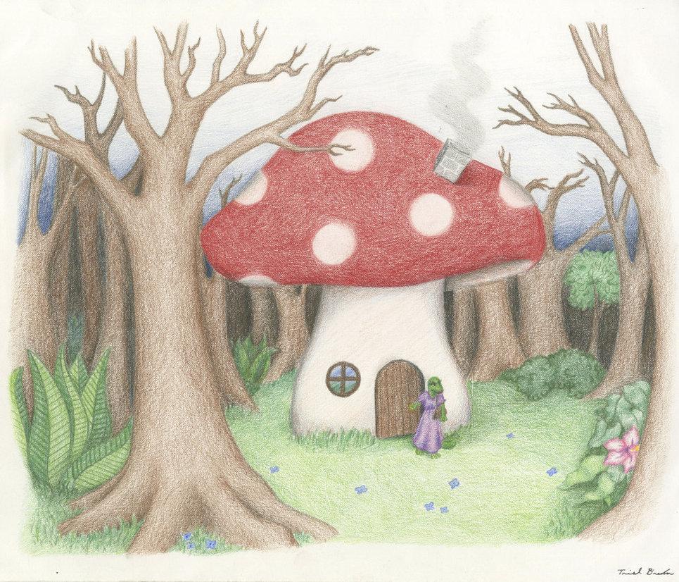 965x826 Mushroom House By Tb08