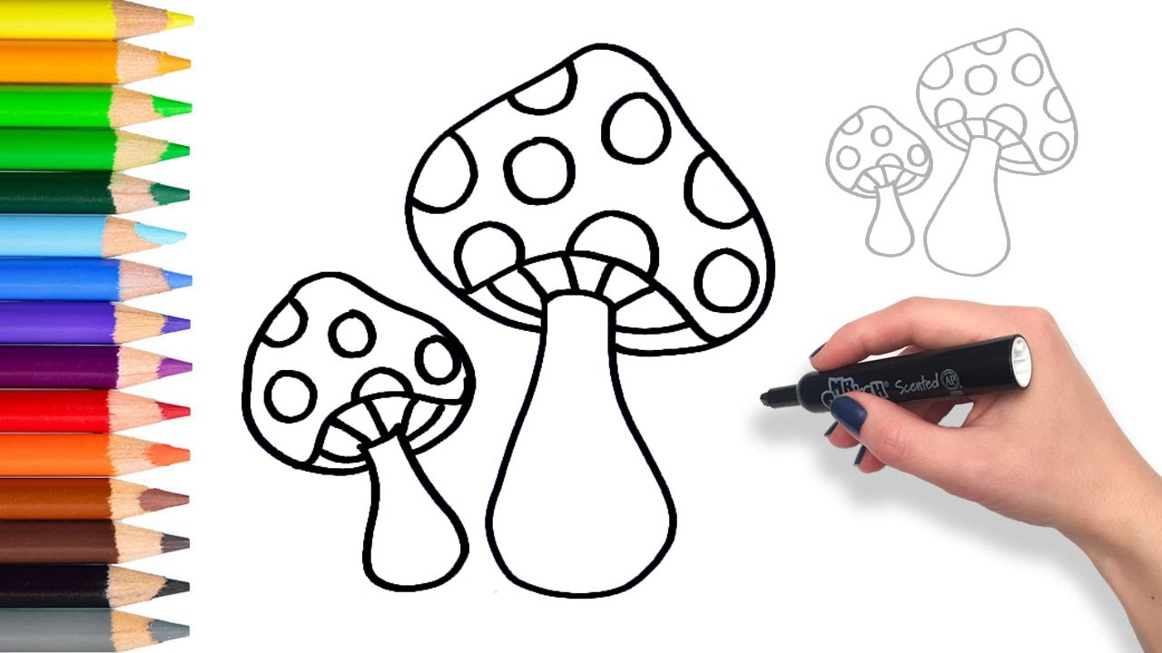 1280x720 Learn How To Draw Mushrooms Teach Drawing For Kids And Toddlers