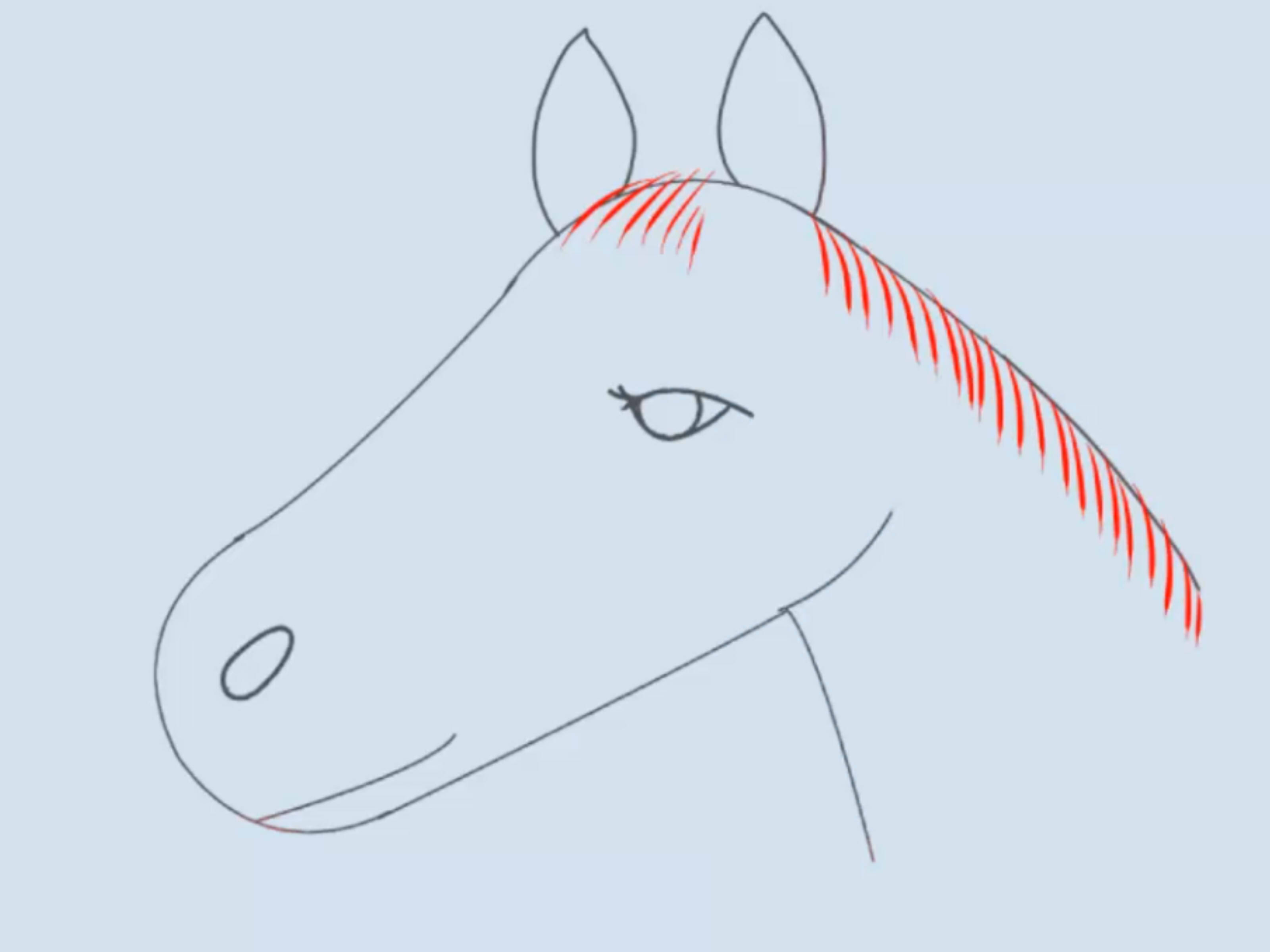 3200x2400 How To Draw A Horse Head 15 Steps (With Pictures)