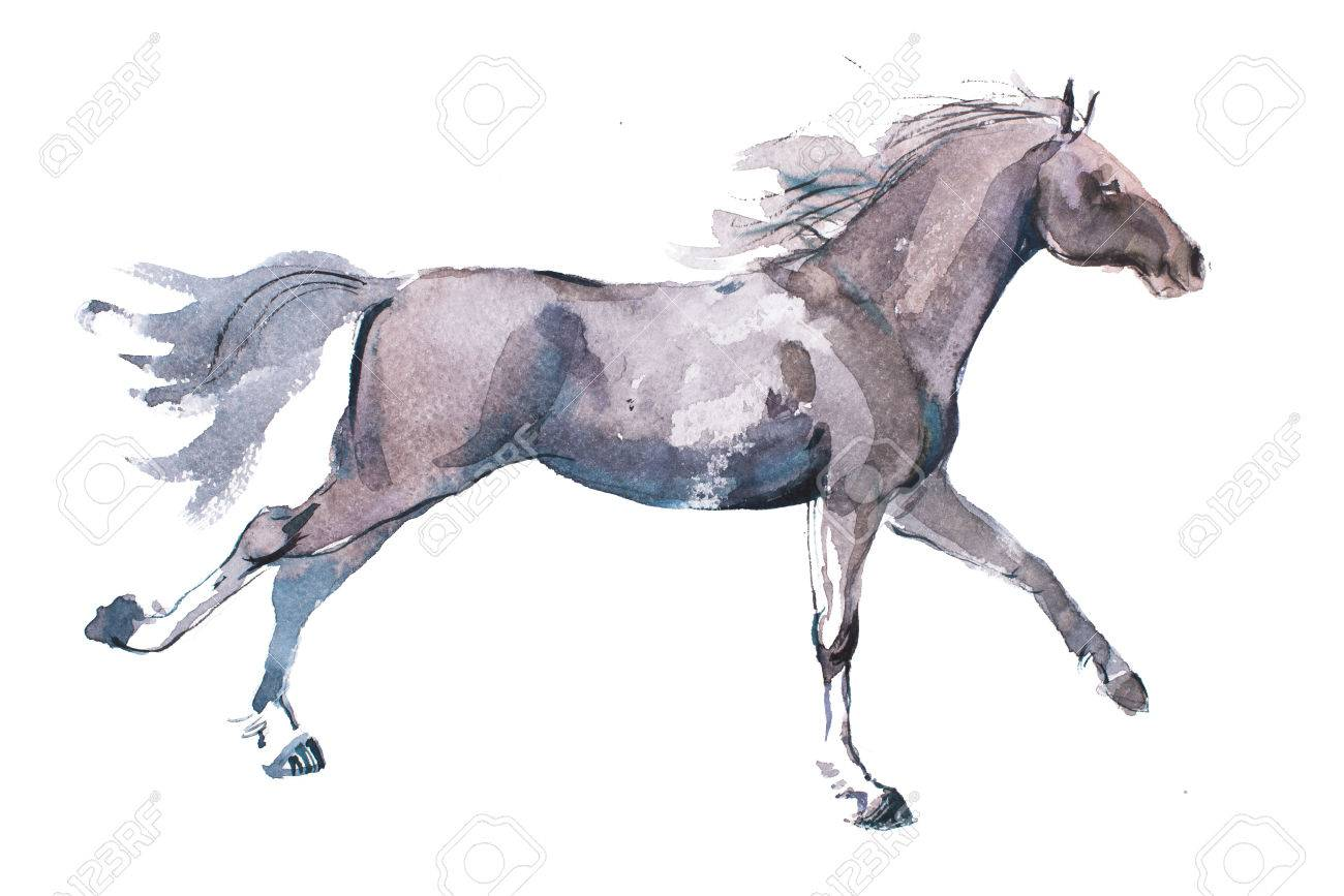 1300x867 Watercolor Drawing Of Jogging Horse, Young Mustang Doing Dogtrot