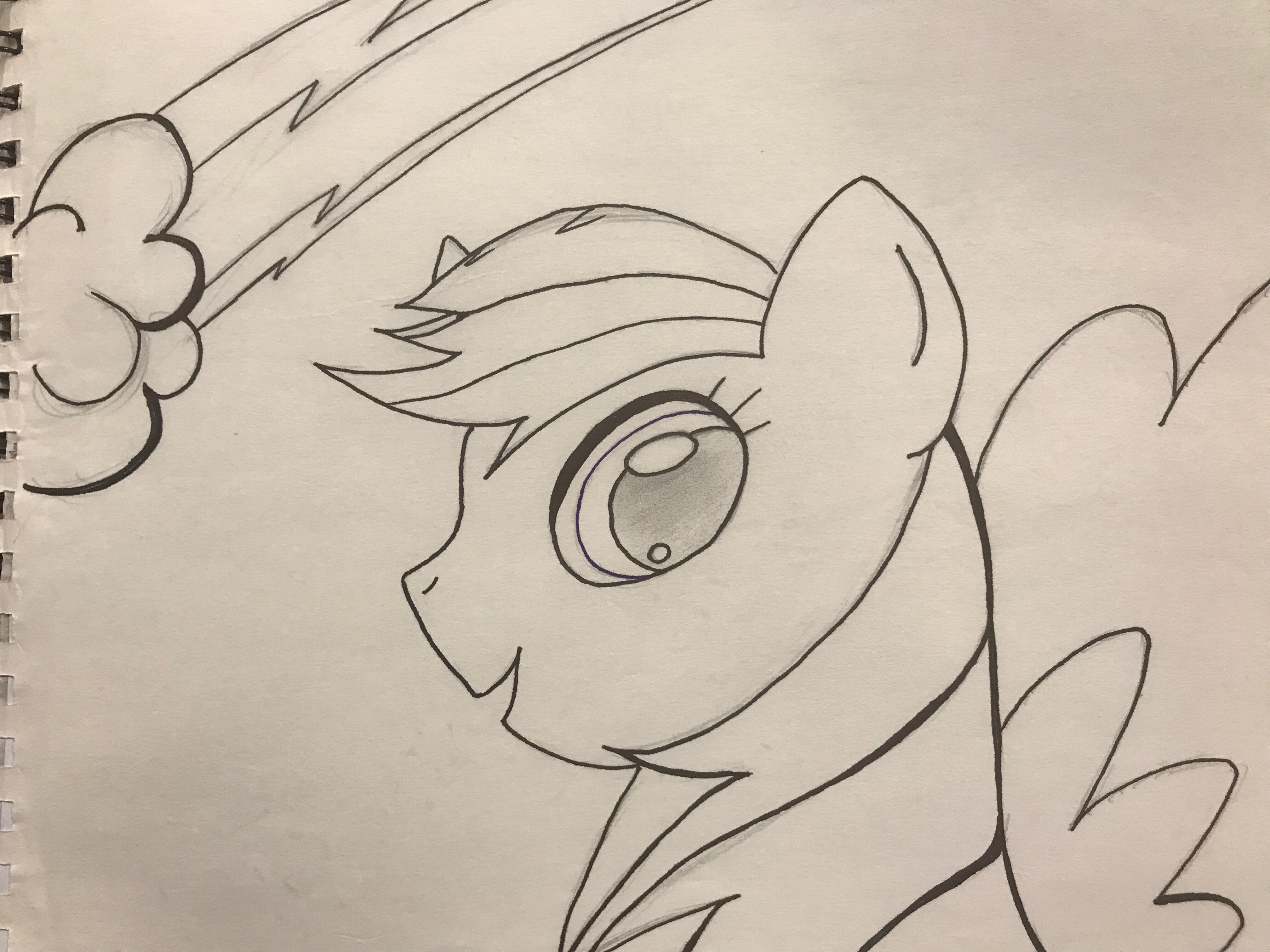 4032x3024 Rainbow Dash My Little Pony Image Found Off Of Internet. Pencil