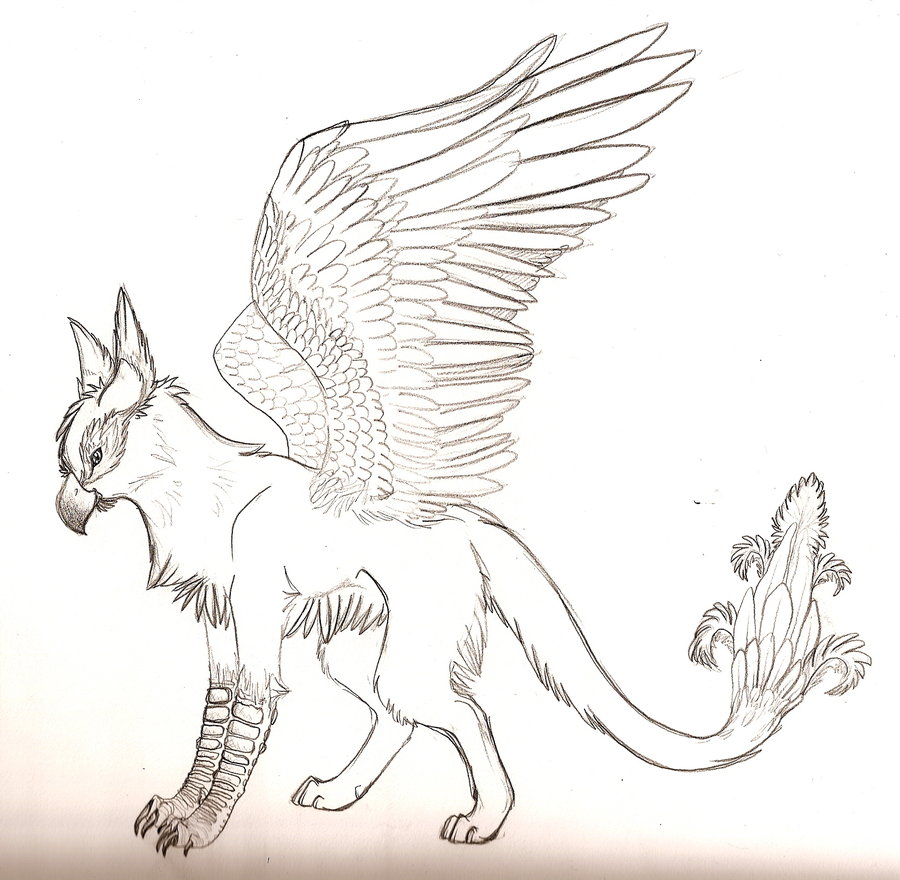 900x880 Mythical Creatures Drawings Drawn Griffon Mythical Creature