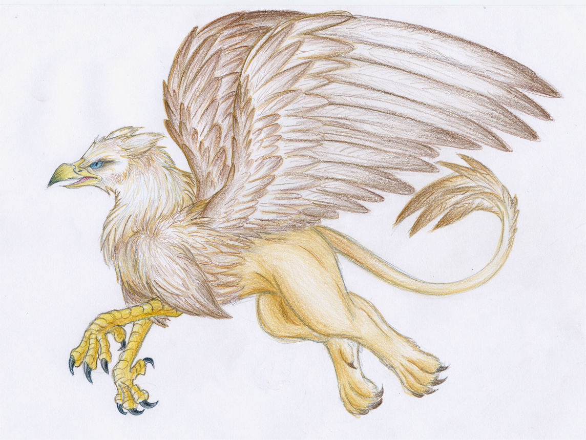 1144x859 Mythical Creatures Drawings Drawing Of Mythical Creatures How
