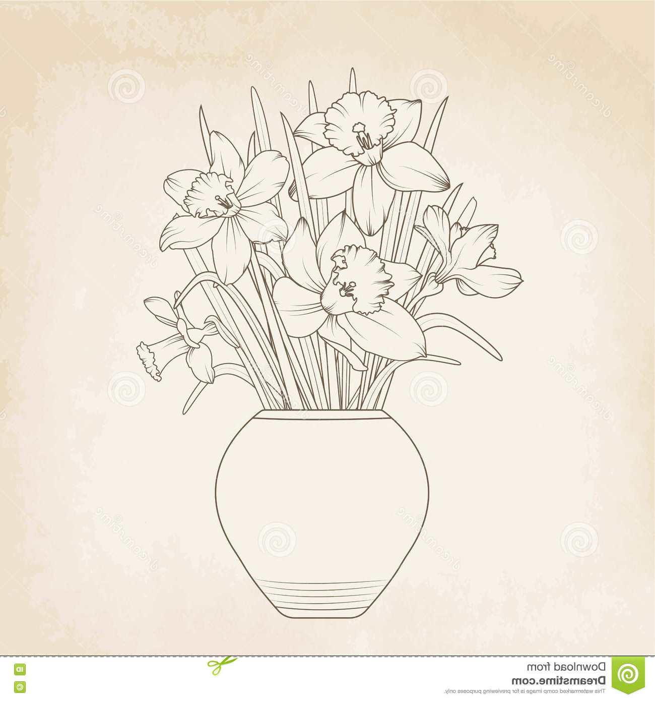 1300x1390 How To Draw Daffodil Flower Vase Daffodils Drawing Free Download